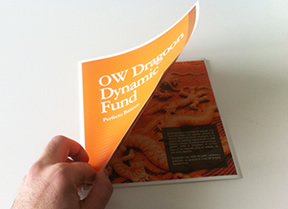 OW Dynamic Fund